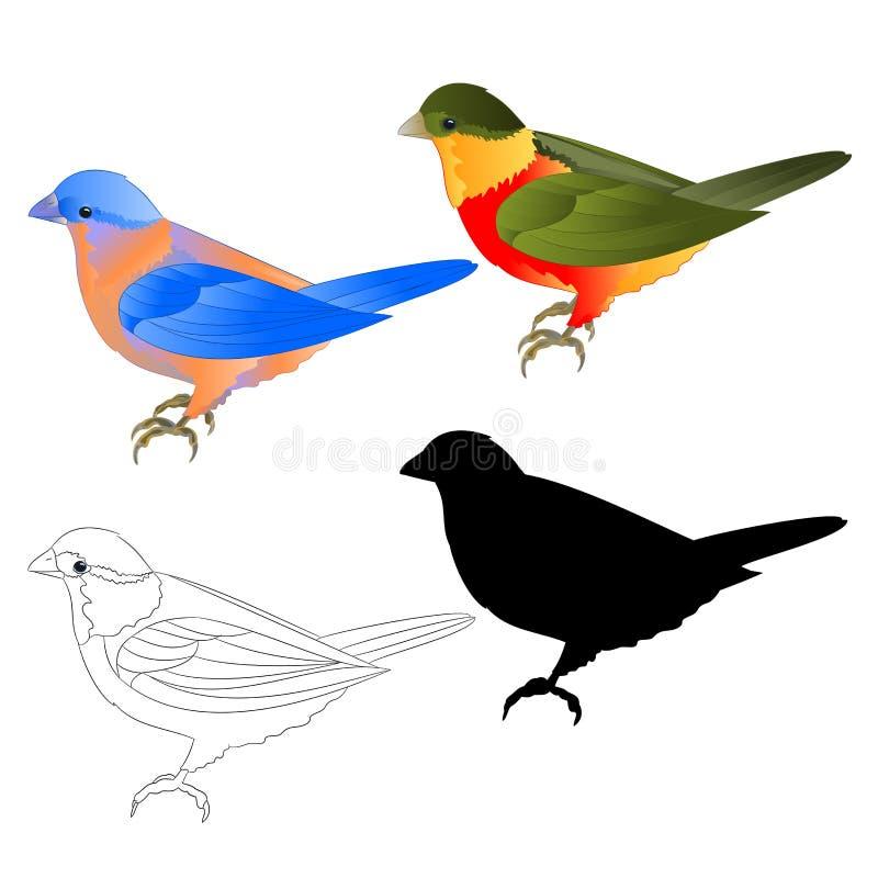 蓝鸫鹅口疮和热带鸟剪影和概述在编辑可能一个白色背景葡萄酒传染媒介的例证 向量例证