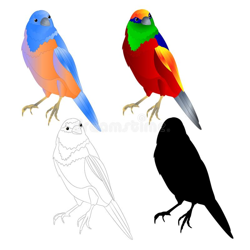 蓝鸫鹅口疮和热带鸟概述和剪影在编辑可能一个白色背景葡萄酒传染媒介的例证 皇族释放例证