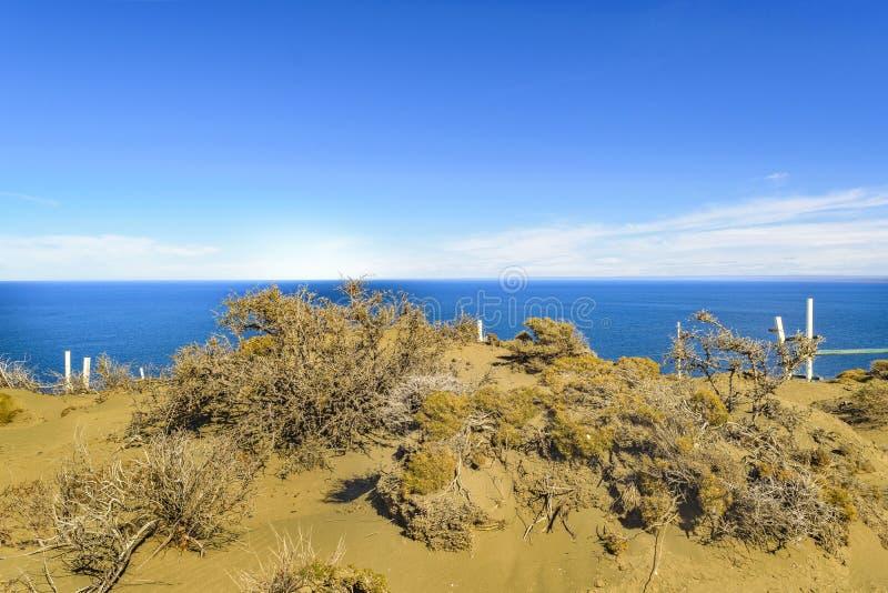蓬塔del Marquez Viewpoint, Chubut,阿根廷 免版税库存图片