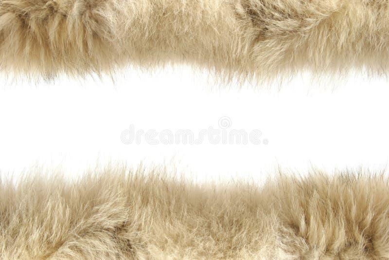 蓬松纹理羊毛 图库摄影