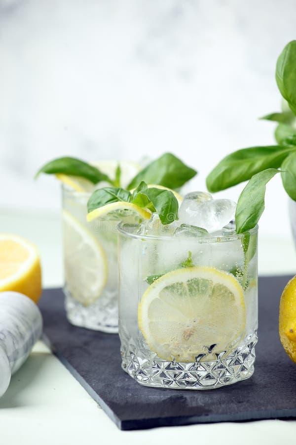 蓬蒿、柠檬柠檬水或者酒精鸡尾酒与冰 冷的夏天饮料,手段酒吧菜单,咖啡馆概念 免版税库存照片