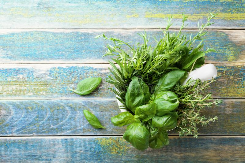 蓬蒿、麝香草、迷迭香和龙篙 在灰浆的芳香草本在土气木台式视图滚保龄球 烹调的新鲜的成份 库存图片