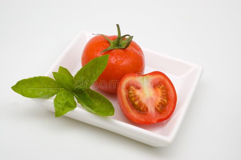 蓬蒿蕃茄 免版税图库摄影
