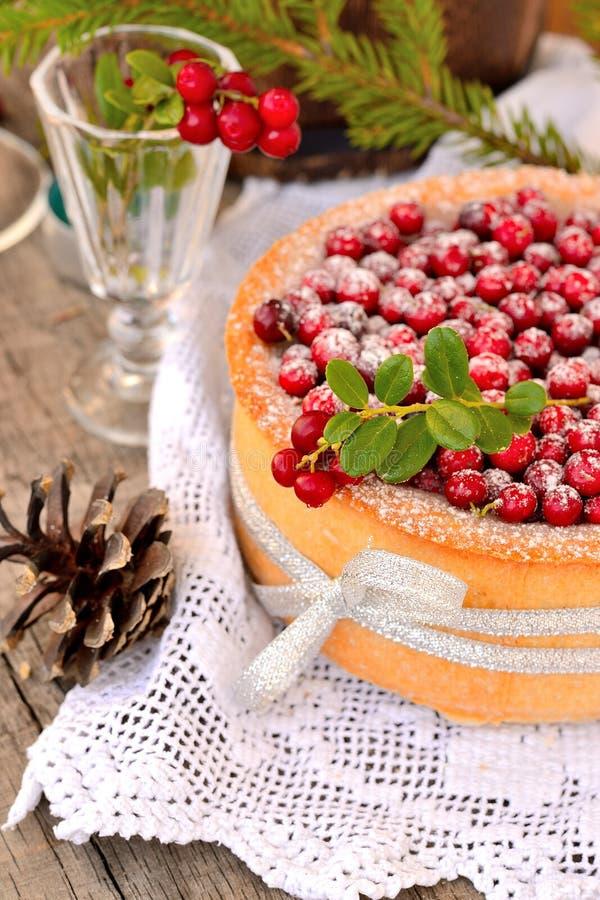 蔓越桔蛋糕 图库摄影