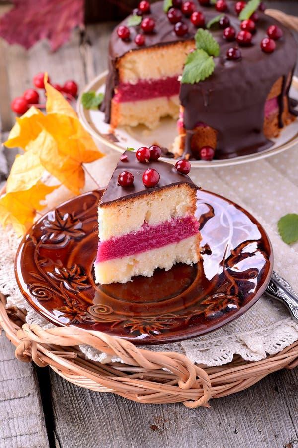 蔓越桔蛋糕 库存图片