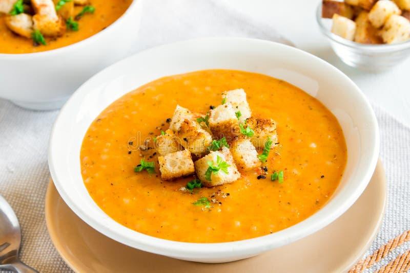 蔬菜汤用油煎方型小面包片 库存照片