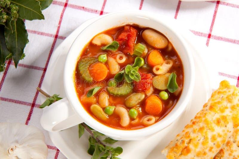 蔬菜通心粉汤汤 库存照片