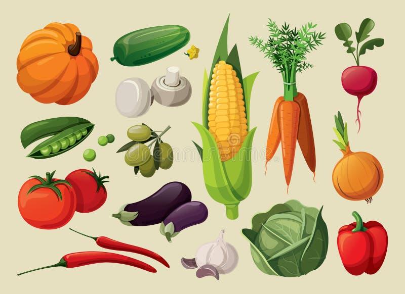 蔬菜 库存例证