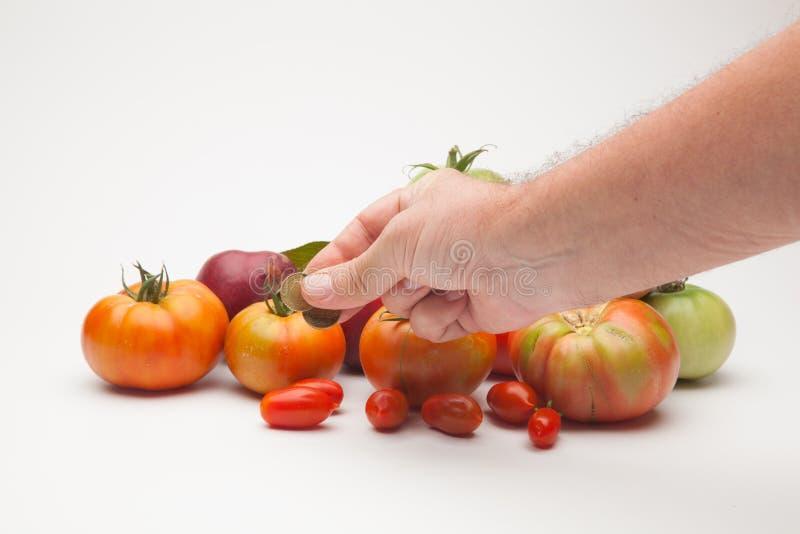 蕃茄、果子和它的价格在市场上 免版税库存照片