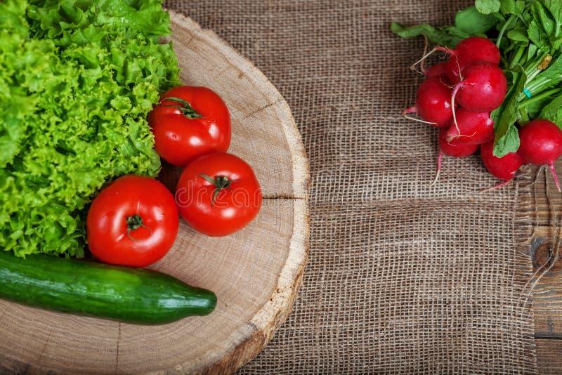 蕃茄、黄瓜、萝卜和莴苣 复制空间 concep 图库摄影