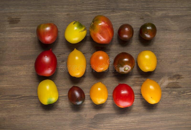 蕃茄不同的品种果子  库存图片