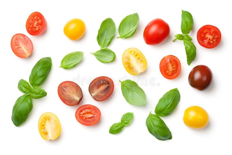 蕃茄和在白色背景隔绝的蓬蒿叶子 库存图片