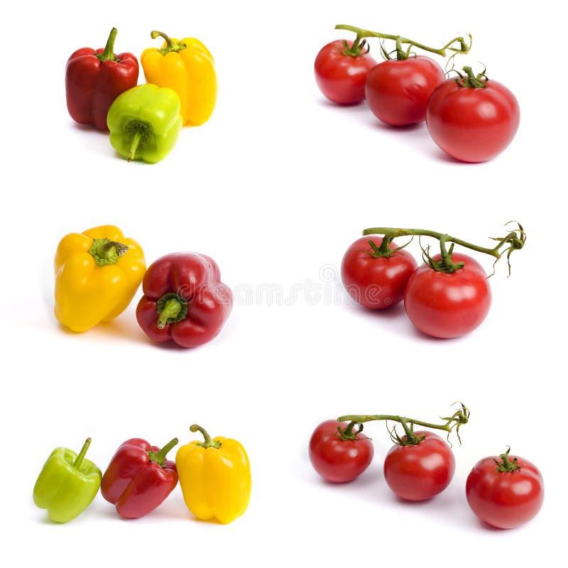 蕃茄和甜椒在白色背景 在白色背景的红色和黄色胡椒 蕃茄用五颜六色的胡椒 库存图片