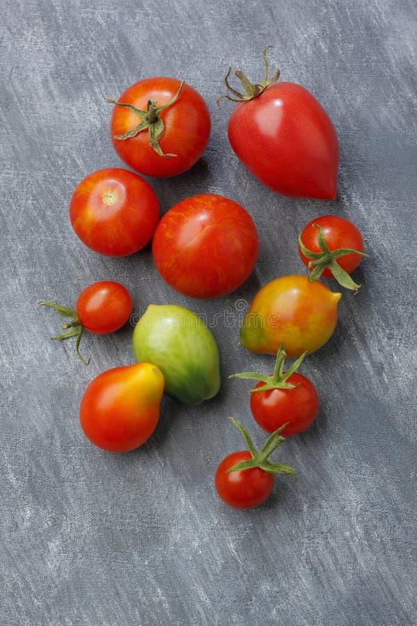 蕃茄品种结果实在被绘的纺织品背景 库存图片