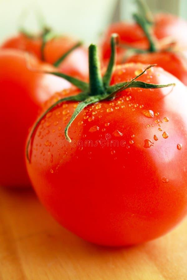 蕃茄弄湿了特写镜头 免版税库存图片