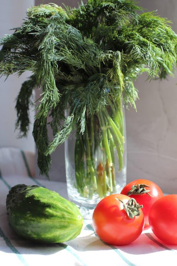 蕃茄新鲜的莳萝和黄瓜在洗碗布,坚硬光 免版税库存照片