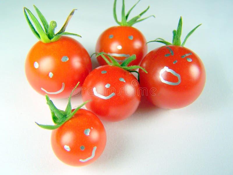 蕃茄系列  免版税库存照片