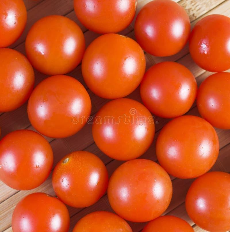 蕃茄背景 免版税库存图片