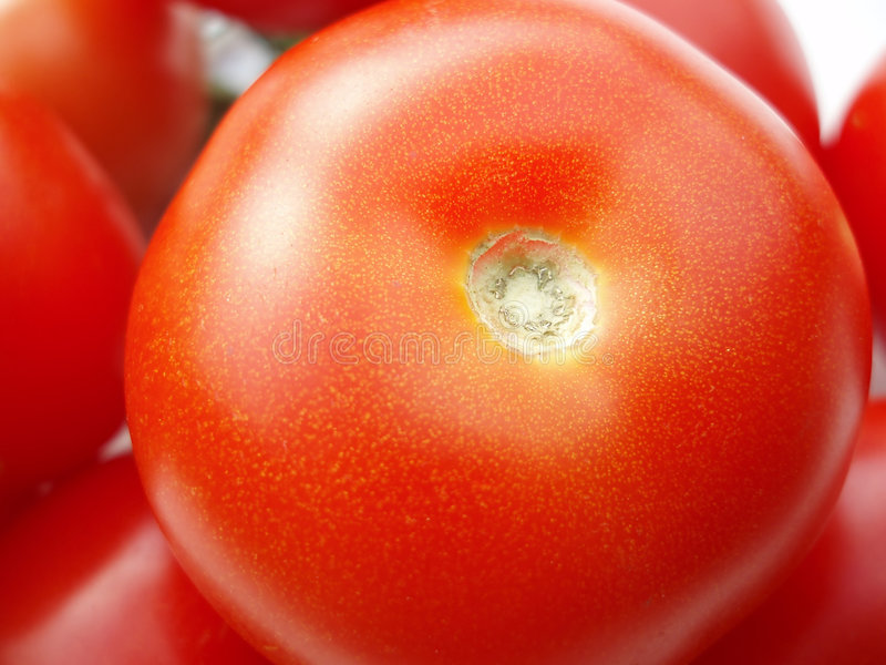 Download 蕃茄 库存图片. 图片 包括有 蕃茄, 饮食, 庭院, 沙拉, 问题的, 成份, 副食品, 背包, 来回, 庄稼 - 194783