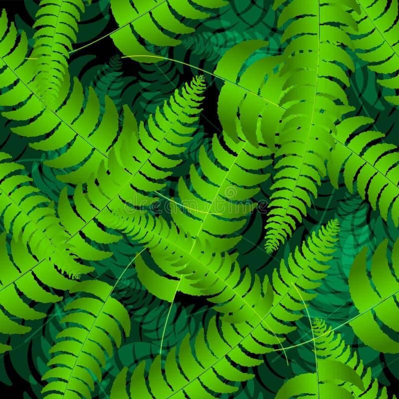 蕨叶状体现出轮廓无缝的样式 也corel凹道例证向量 库存例证