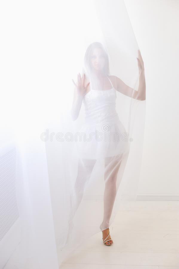 薄纱白色 免版税库存图片