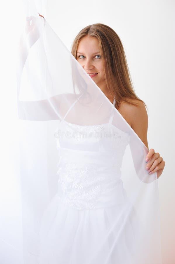薄纱白色 库存照片