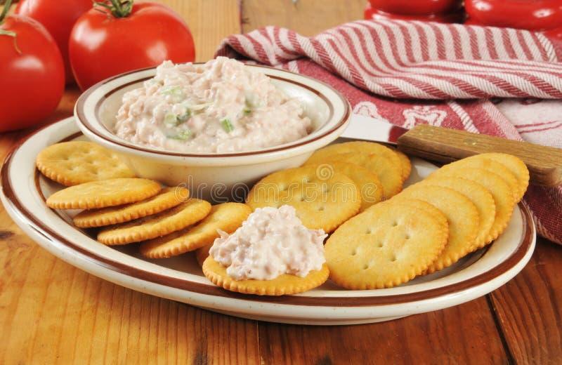 薄脆饼干和火腿沙拉 免版税图库摄影