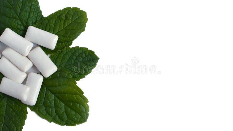 薄荷叶和口香糖在白色背景 免版税库存照片