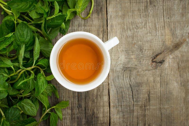 薄荷的茶 免版税库存图片