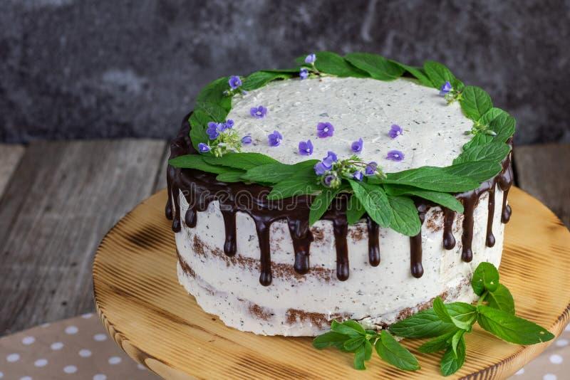 薄荷蛋糕,马斯卡蓬,巧克力,薄荷叶和速度井花 免版税库存图片
