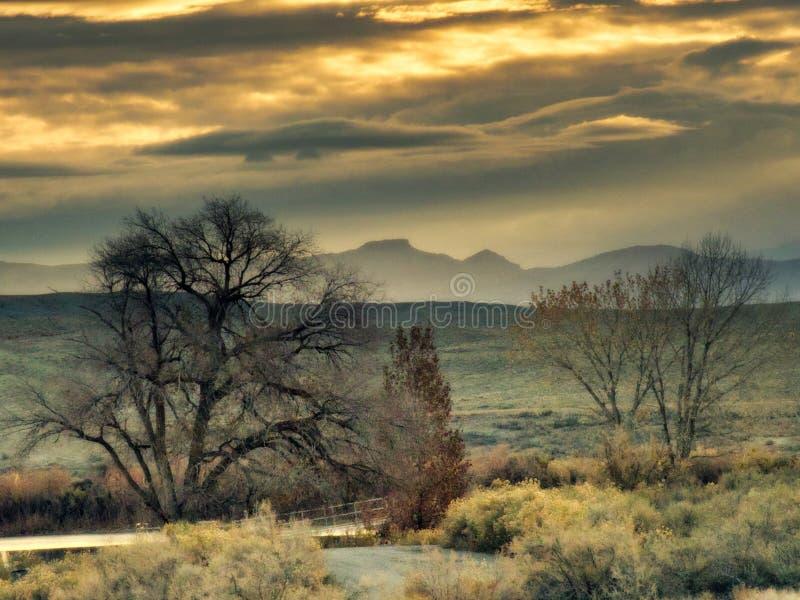 薄雾、山和树剪影 图库摄影