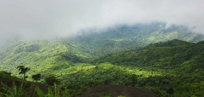 薄雾全景美好的自然风景在绿色山的 免版税图库摄影