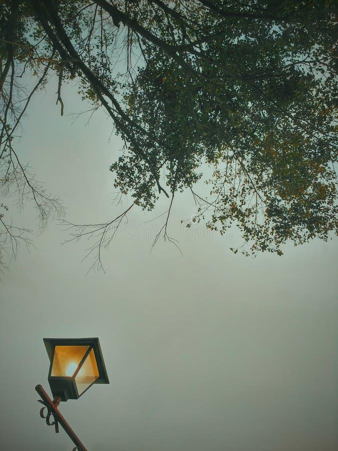 薄雾墙纸 库存照片