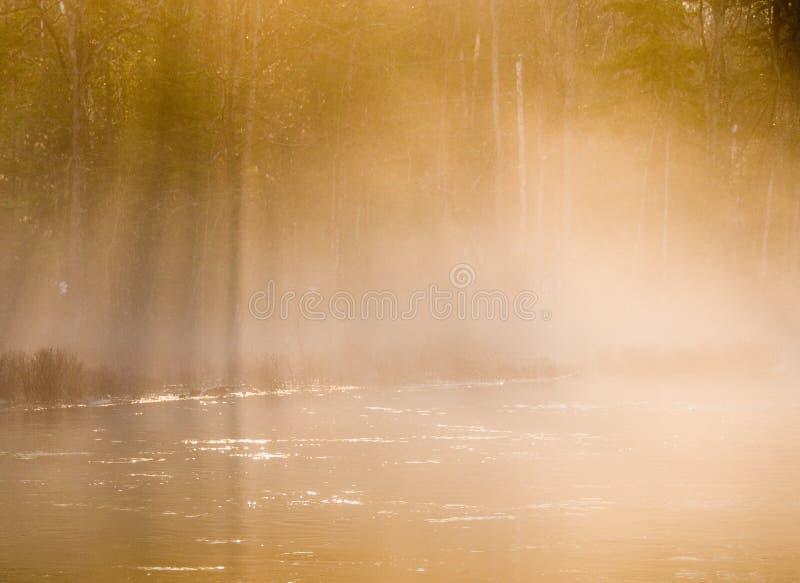 薄雾早晨 图库摄影