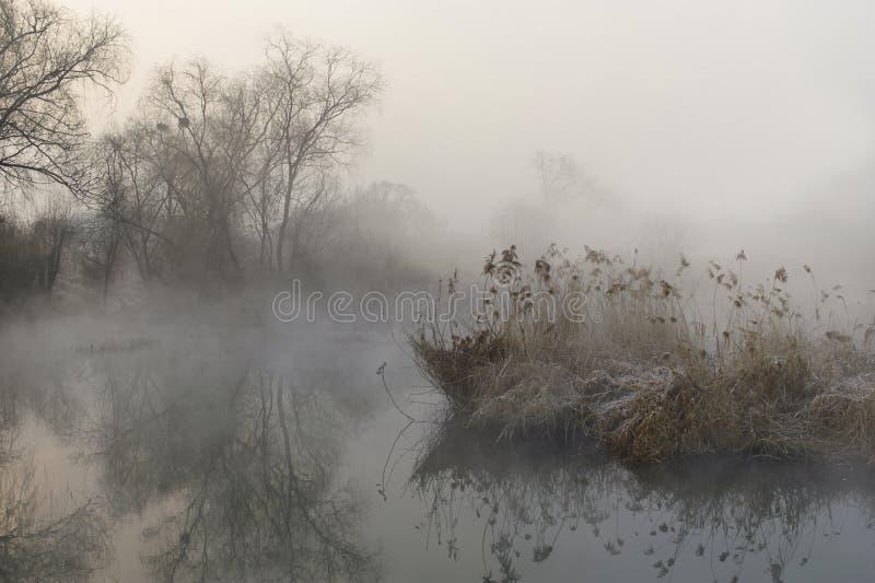 薄雾风景 免版税库存照片