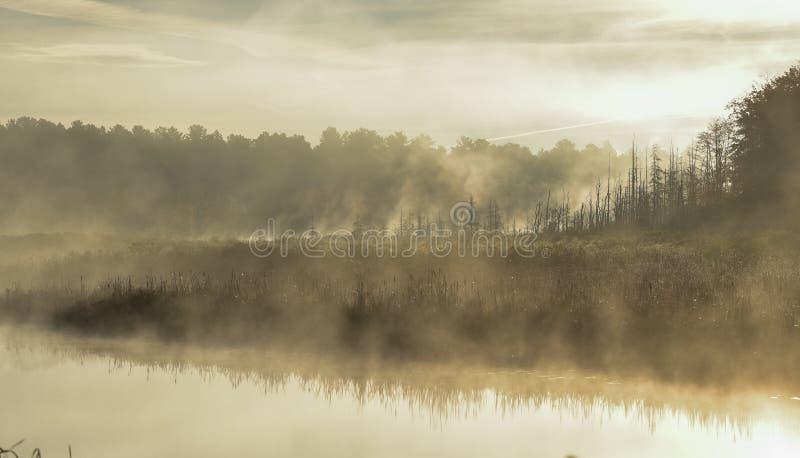 薄雾从Ontario湖的沼泽上升 在苍白夏天天空的转换轨迹 在湖的狭窄的段落的日出 免版税库存图片