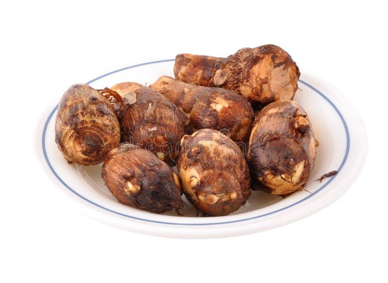 薯类 免版税库存图片