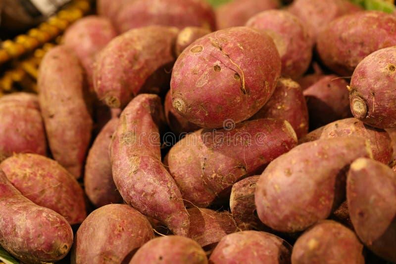 薯类 图库摄影