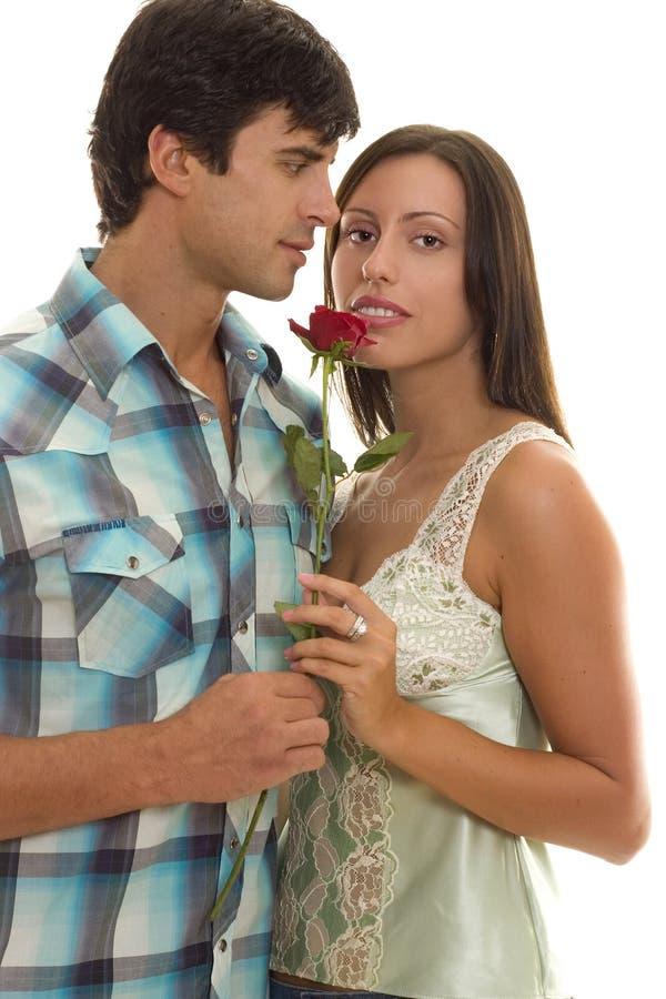 藏品人红色玫瑰单身妇女 免版税库存图片
