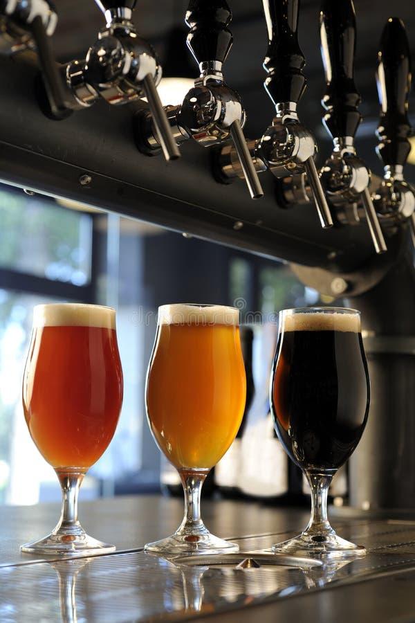 贮藏啤酒和黑暗玻璃  免版税库存照片