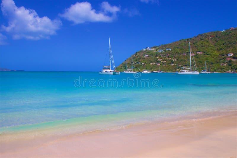 藤茎庭院海湾在托尔托拉岛,加勒比 免版税库存图片
