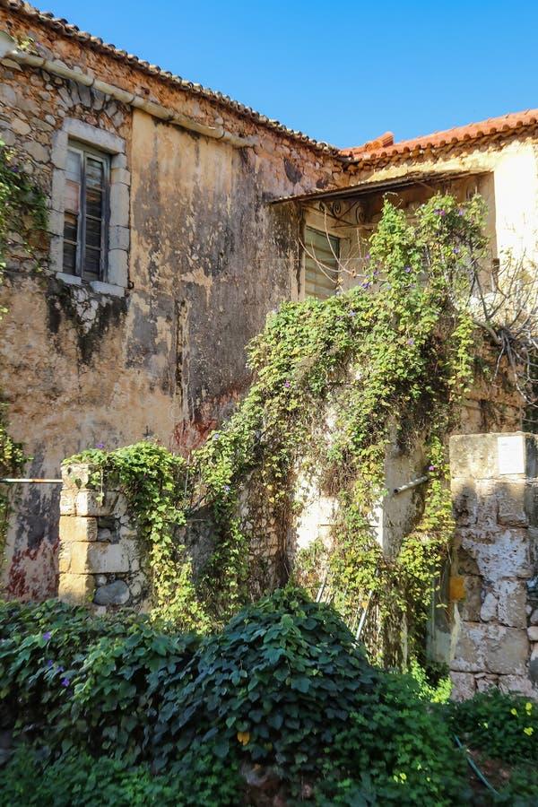 藤跑一个老二层楼房的边在一个小伯罗奔尼撒村庄由海 免版税库存图片