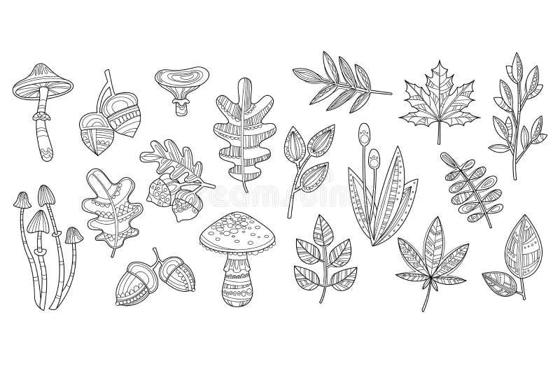 蘑菇伞菌、伞形毒蕈、橡子、叶子橡木,槭树和其他植物手拉的剪影  单色传染媒介 向量例证