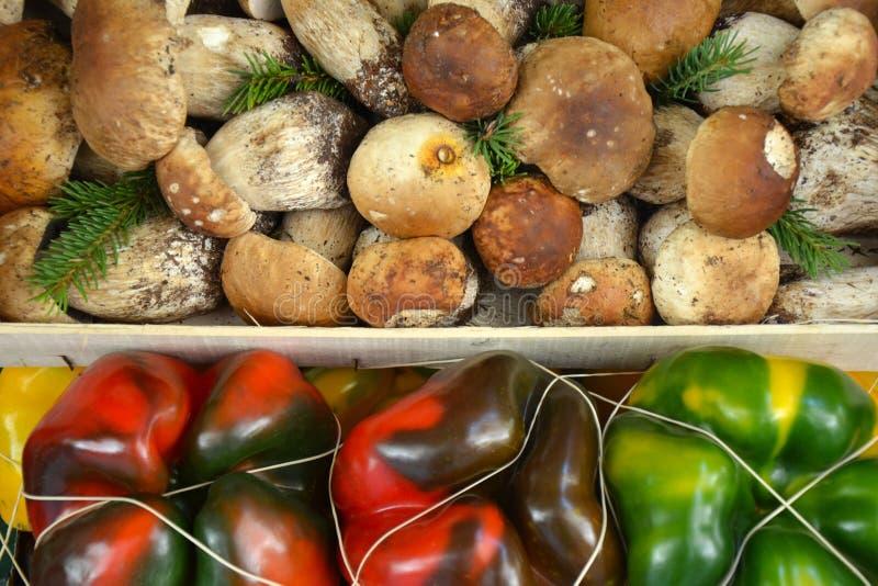 蘑菇和胡椒 库存照片