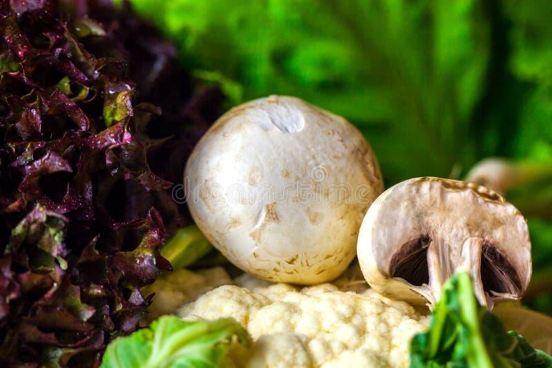 蘑菇和花椰菜未加工的蔬菜静物画 免版税库存图片