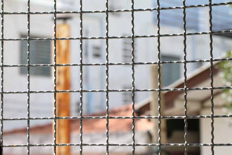 蘑菇在拘留里面的铁丝网笼子在钢笼子,裂口铁网墙壁导线金属正方形防止的栅格篱芭内 免版税库存图片