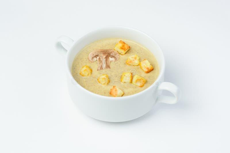 蘑菇奶油色汤用在白色背景的油煎方型小面包片 免版税库存图片