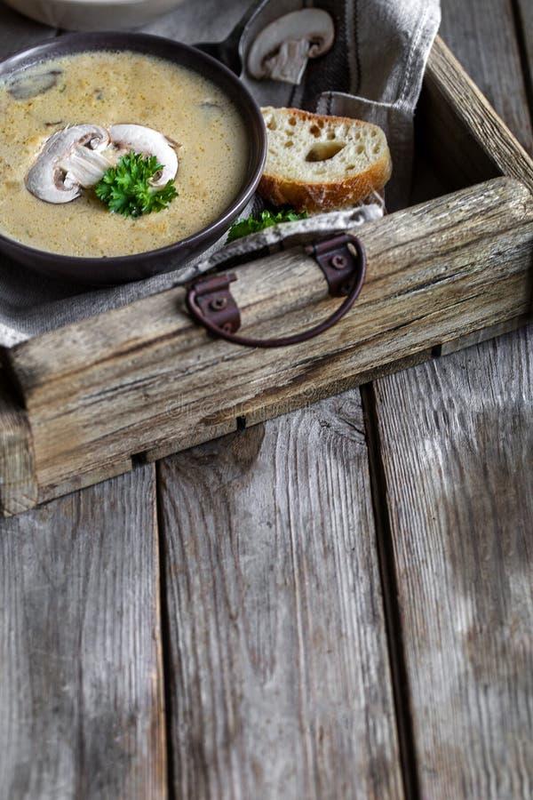 蘑菇汤泥背景 库存图片