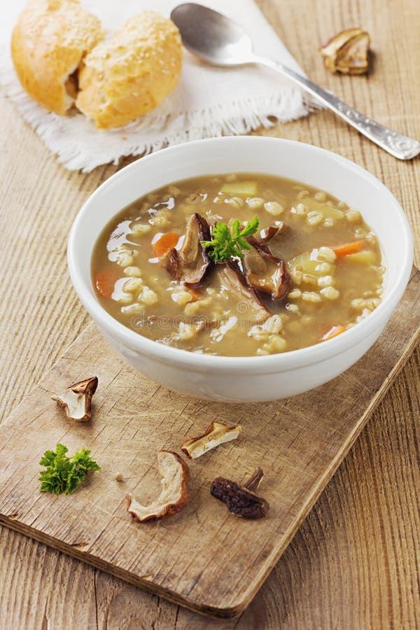 蘑菇汤用大麦和菜 免版税库存照片