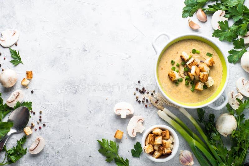 蘑菇汤纯汁浓汤用油煎方型小面包片 免版税图库摄影
